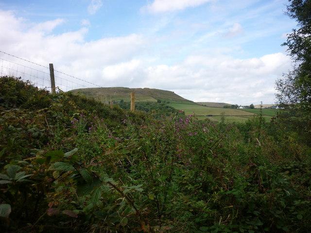 Tor Hill