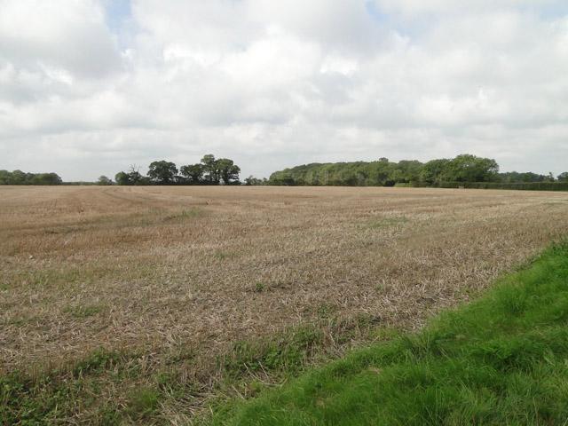 Open fields off Buckleswood Road