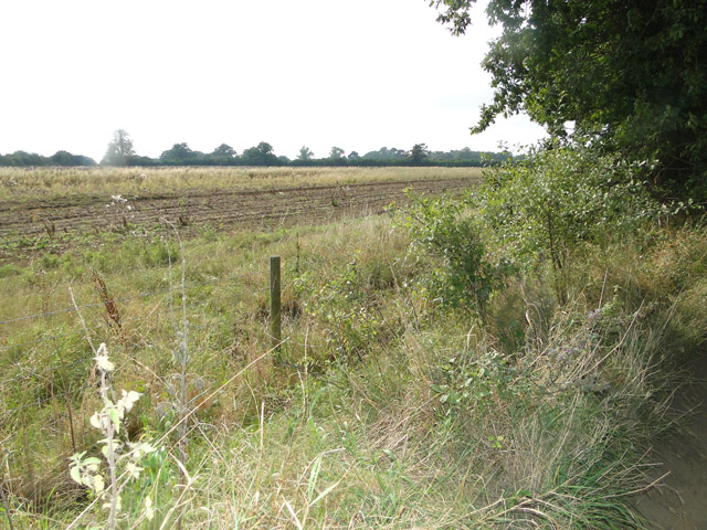 Partly ploughed stubble field