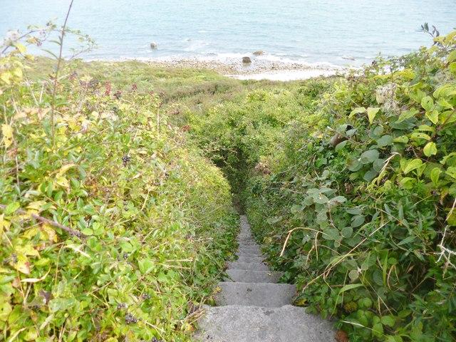Grove, steps