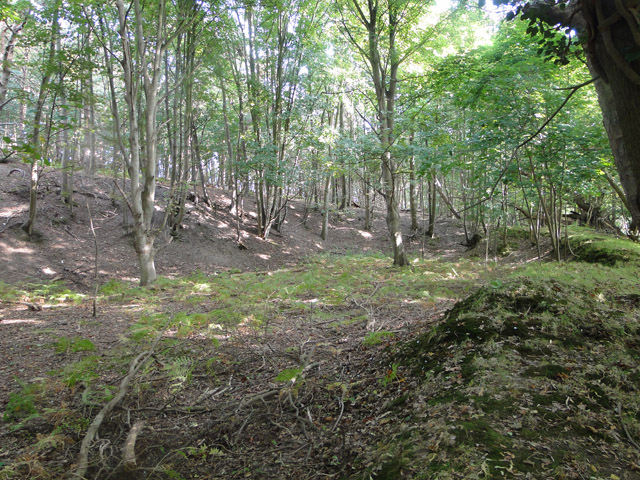 Saunders Hill and old pit workings