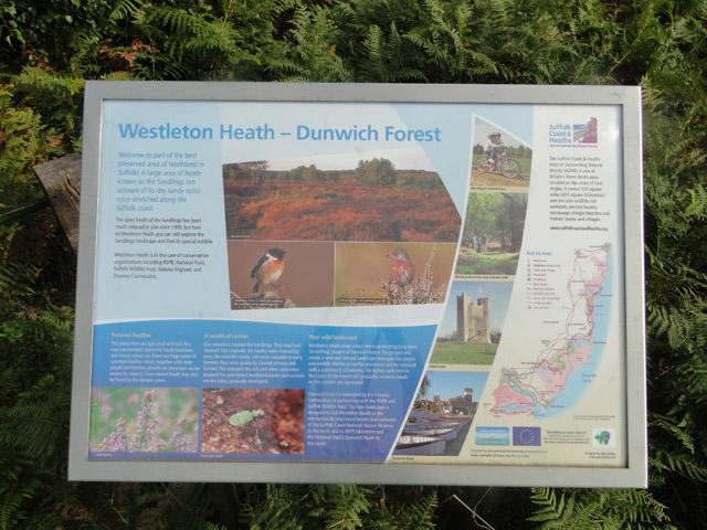 Information board at Westleton Heath - Dunwich Forest