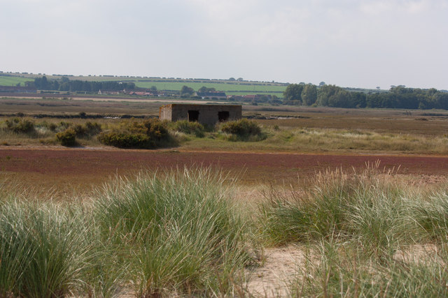 Saltmarsh behind the dunes