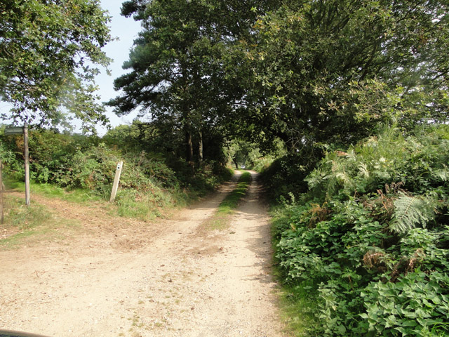 Sandy Lane, near Leiston Common