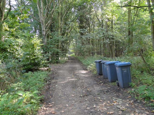 Entrance to Greyfriars Wood