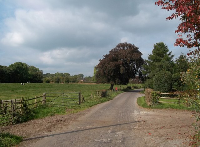 Yew Tree Lane, Bradley