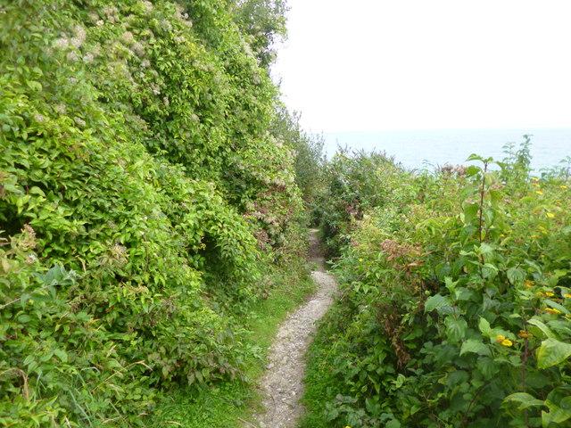 Grove, footpath