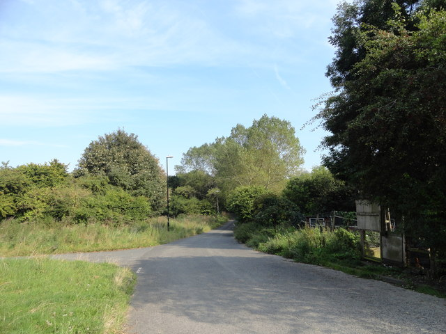 Lane at Chartershaugh
