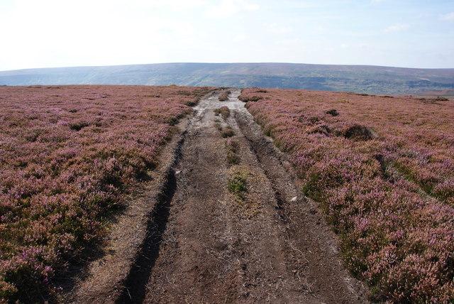 Moorland track to Farndale