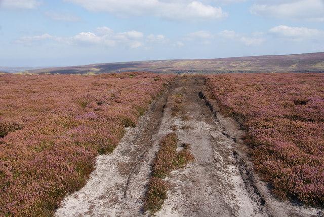 Moorland track above Farndale