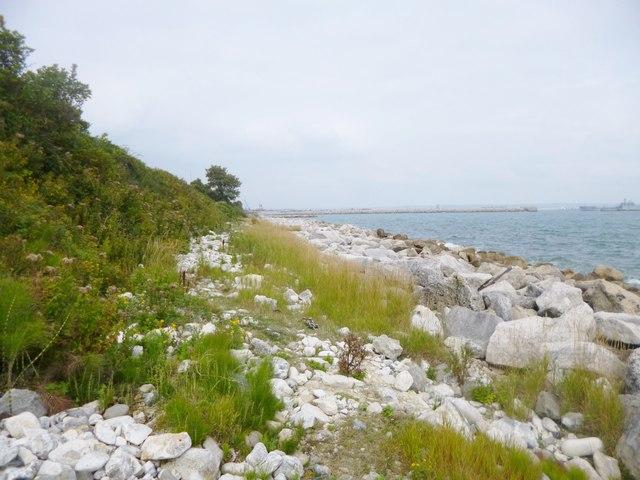 Grove, coastline