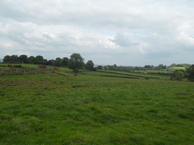 Farmland near Hulland Ward