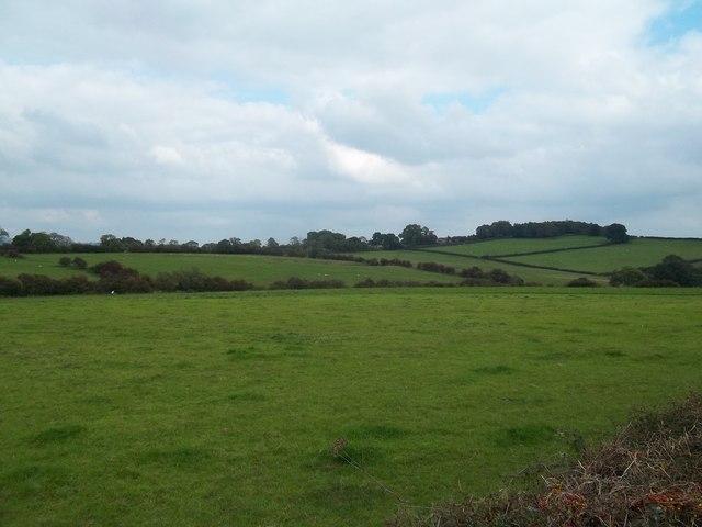 View Across Waterlagg Brook
