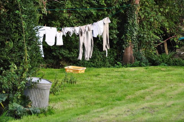 West Somerset : Riphay Barton Garden