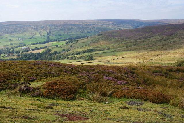 Moorland above Farndale