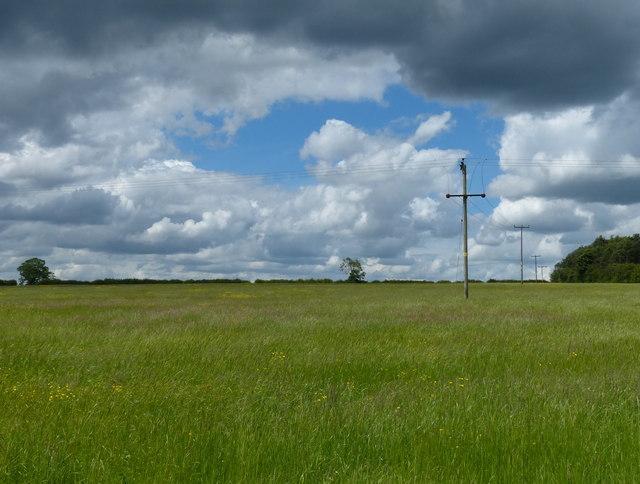 Farmland near Palace Hill