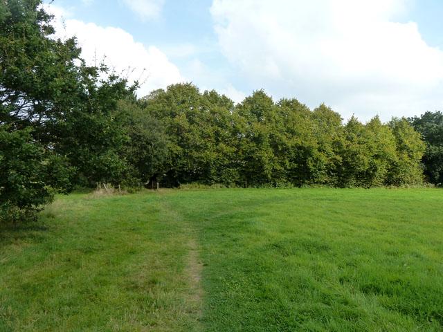 Footpath towards church, Bisley