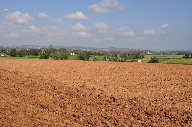 East Devon : Ploughed Field