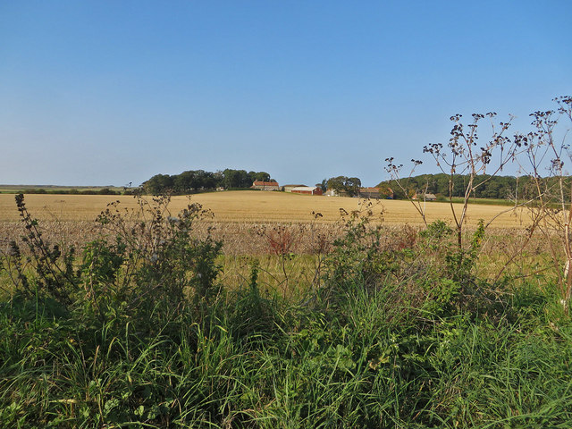 Field south of Marsh House Farm