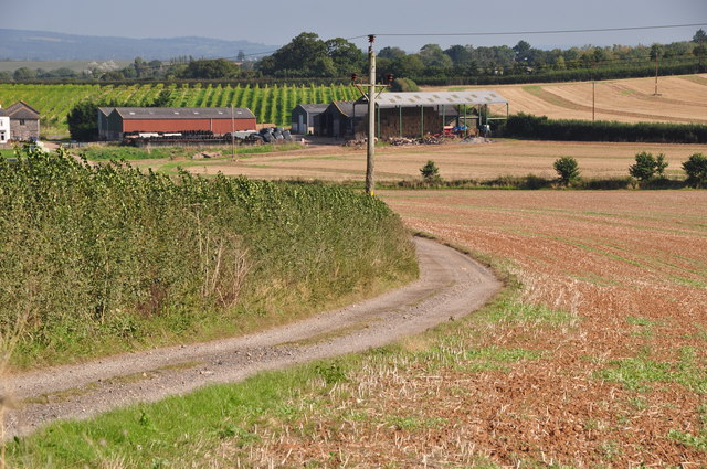 East Devon : Farm Track