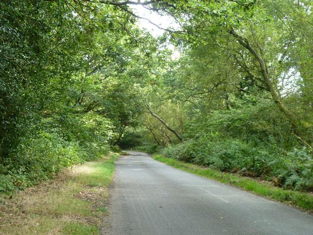 Rye Grove