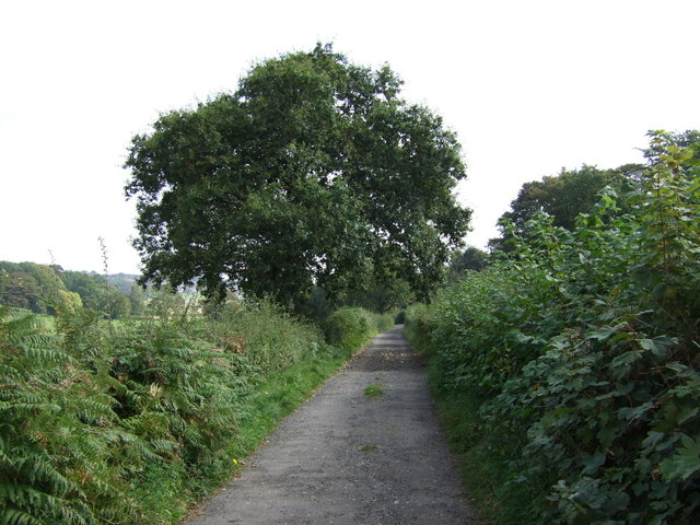 Farm track (bridleway) off Crank Road