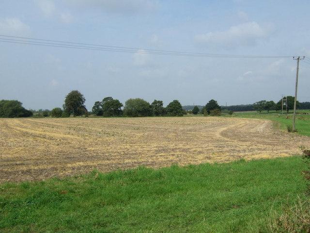 Farmland, Dagnals Bridge Farm