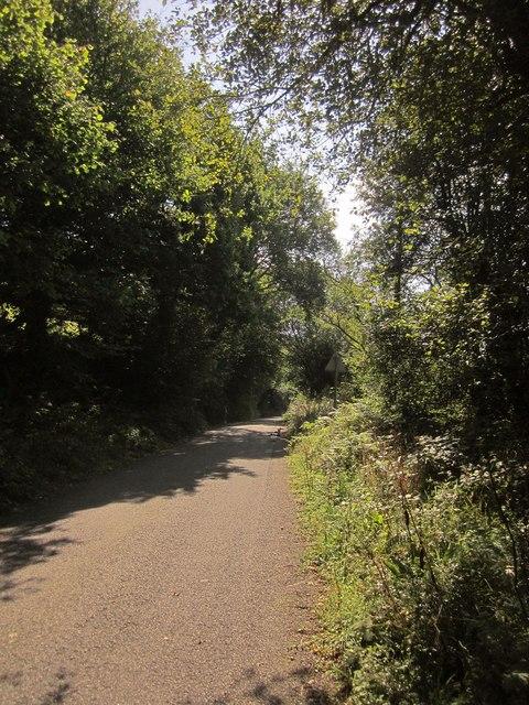 Lane near Trebrownbridge