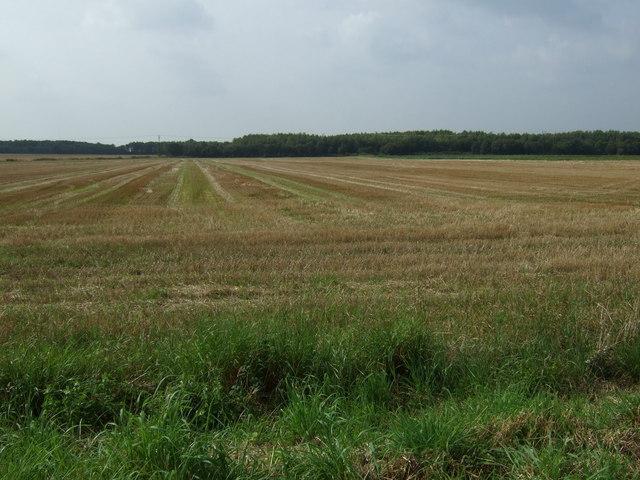 Stubble field near Kings Moss