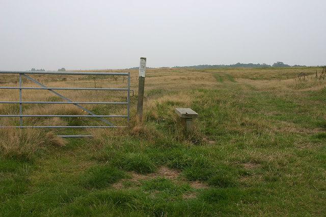 Summit of Burrow Hill