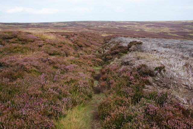 Bridleway by Rosedale Head