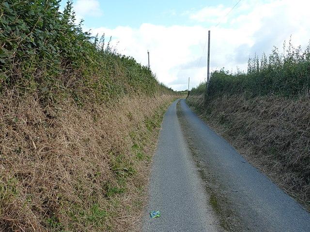 Along Gilton Lane
