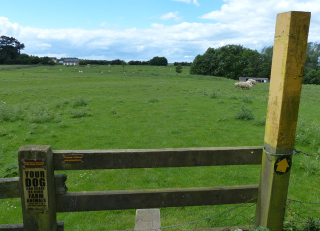 Public footpath to Cold Newton
