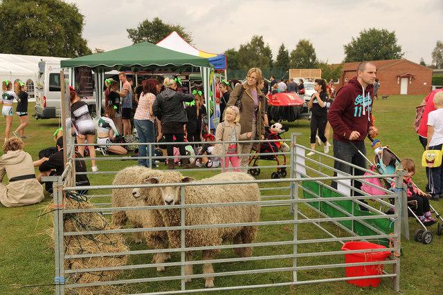 Harby Village Show