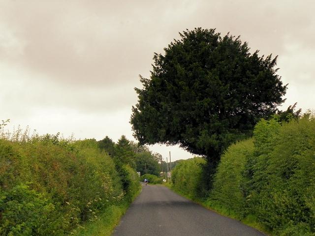 B3046, North of Totford