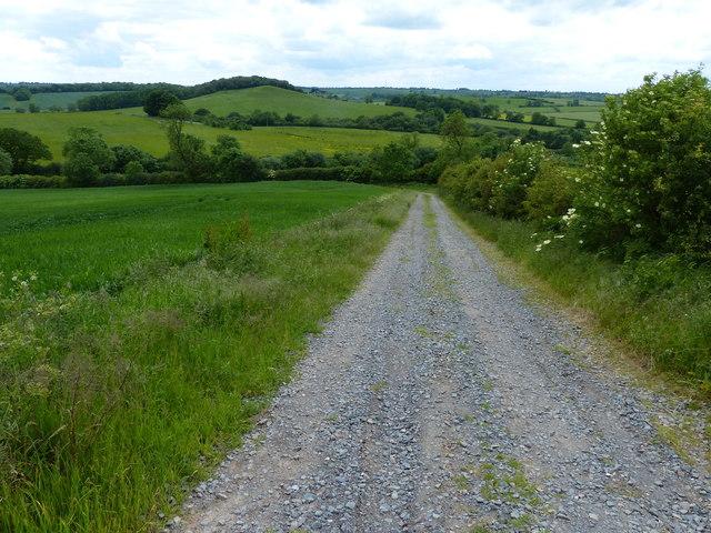 Service track heading down Whatborough Hill