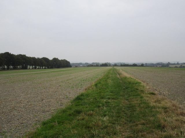Bridleway to Winterbourne Bassett
