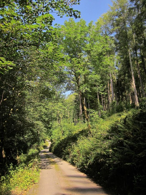 Lane up Seaton valley