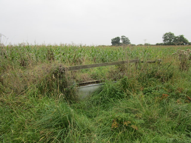 Disused water trough