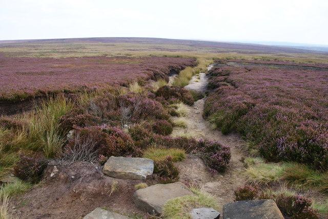 The Lyke Wake Walk on Rosedale Moor