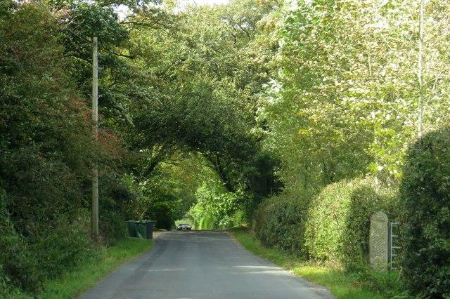 Fluke Hall Lane to the sea
