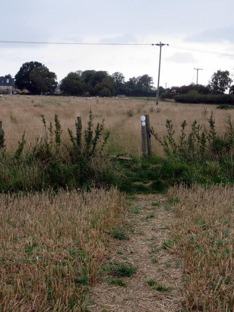 Path into Brafield