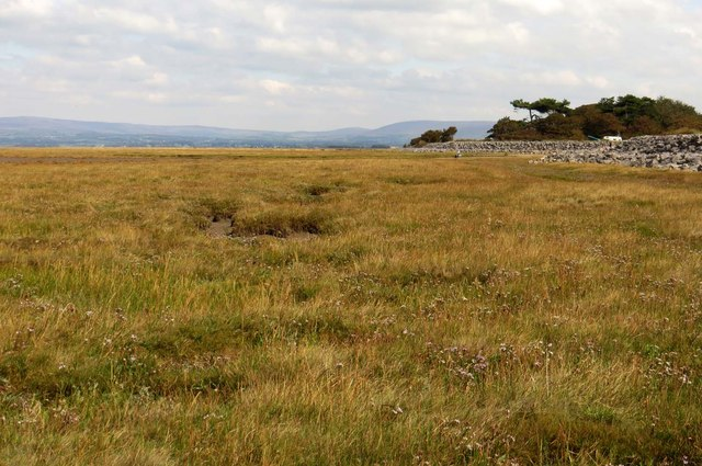 Pilling Marsh by the sea wall