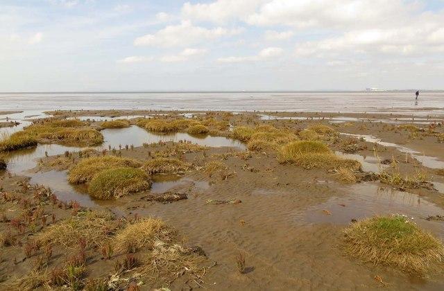 Pilling Marsh meets Preesall Sands