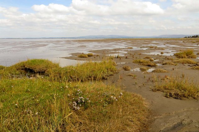 Pilling Marsh meets Preesall Sands