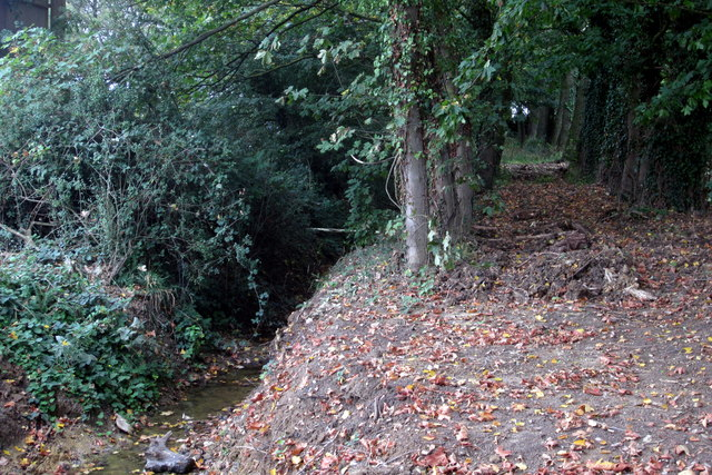 Trees and drain by the Denton Road