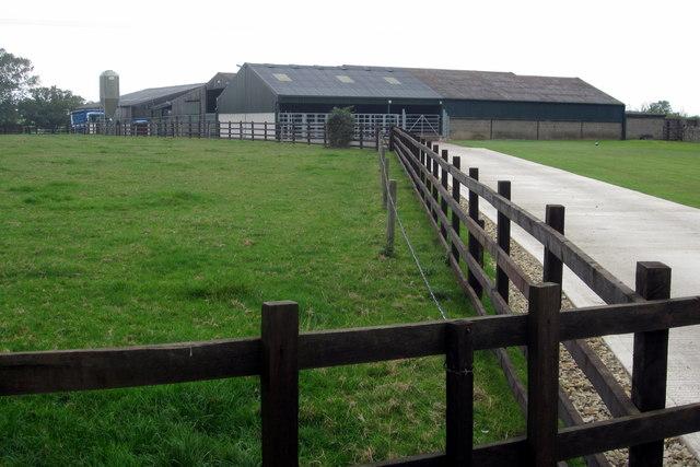 Chase View Farm