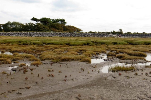 The sea wall behind Pilling Marsh