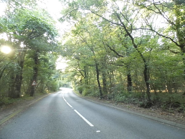 Bookhurst Road, Ewhurst
