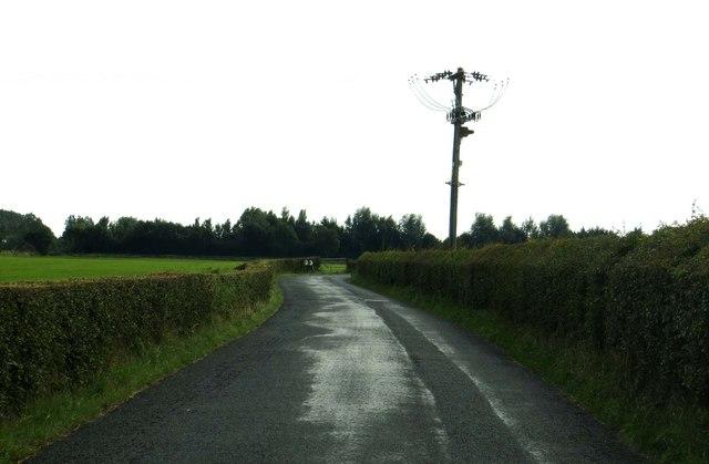 Lambs Lane to Head Dyke Lane